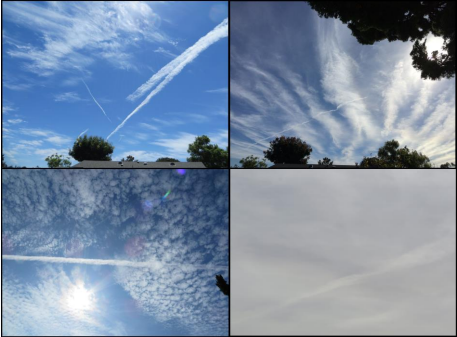 Argumentitive essays on chemtrails