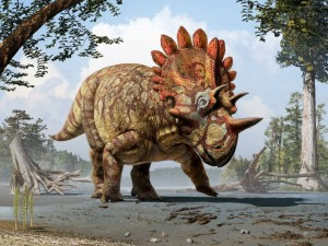 This is an artistic life reconstruction of the new horned dinosaur Regaliceratops peterhewsi in the palaeoenvironment of the Late Cretaceous of Alberta, Canada. SOURCE: Art by Julius T. Csotonyi. Courtesy of Royal Tyrrell Museum, Drumheller, Alberta.