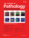 Journal of Pathology