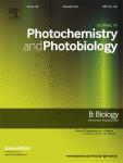 journal-of-photochemistry-and-photobiology
